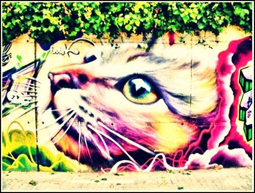 SACADA EN BS. AS (: | world_graffiti