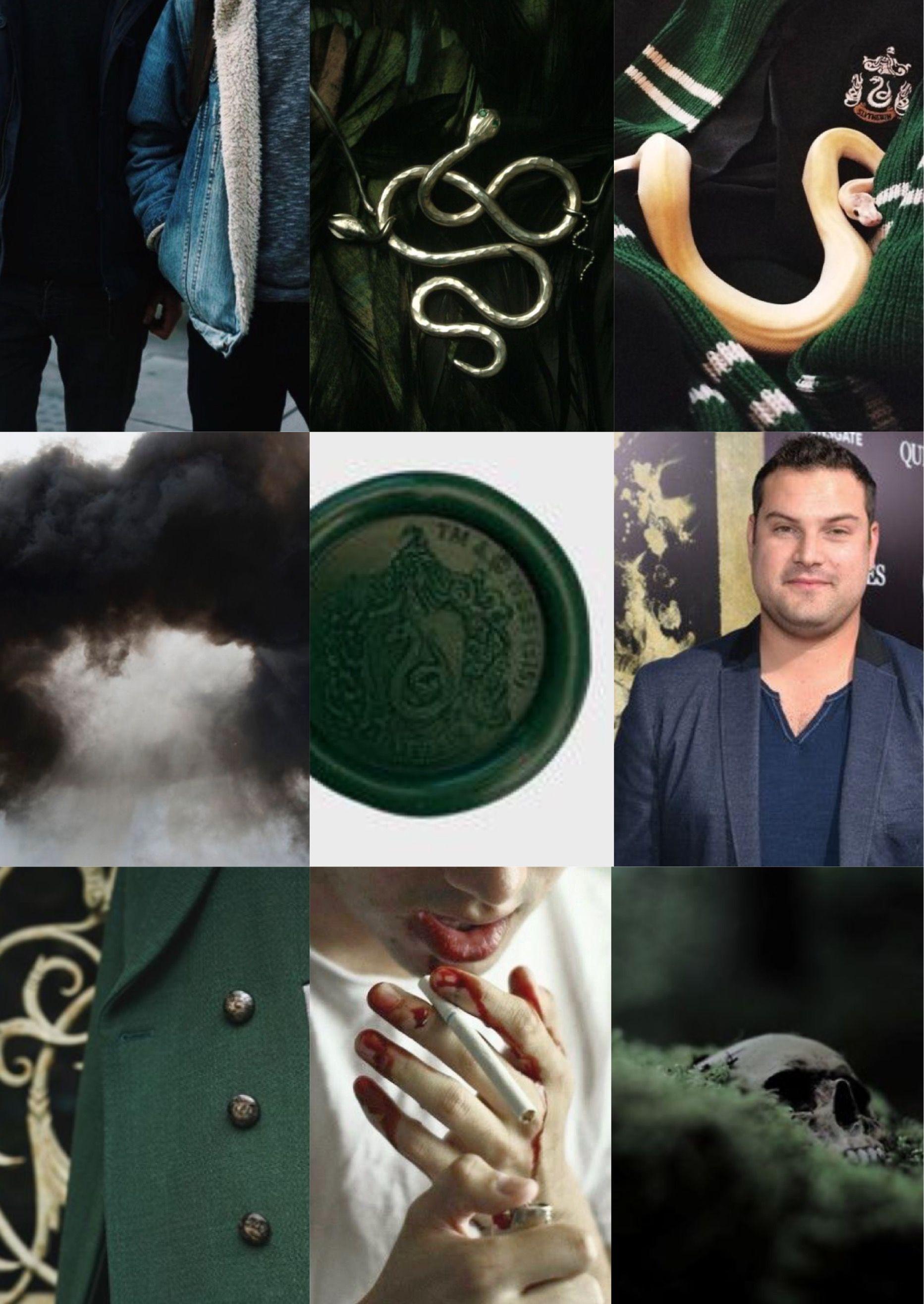 Gregory Goyle Aesthetic Inspiration Harry Potter Slytherin Goyle Harry Potter Harry Slytherin