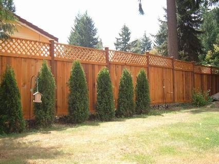 Redwood Lattice Top Fence Panel Idea For Adding Privacy To