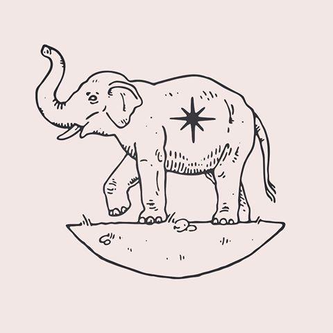 It's World Elephant Day. Elephants bury and mourn their