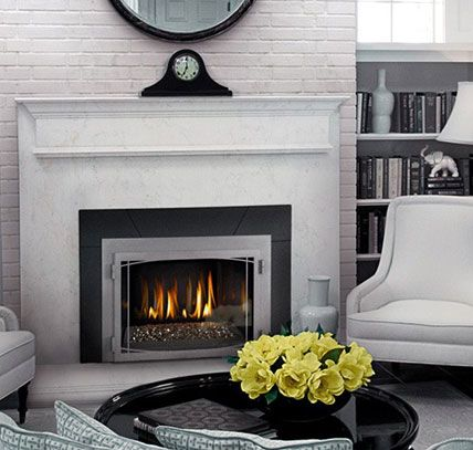 A Great Looking Fireplace Insert The Napoleon Ir3g Http