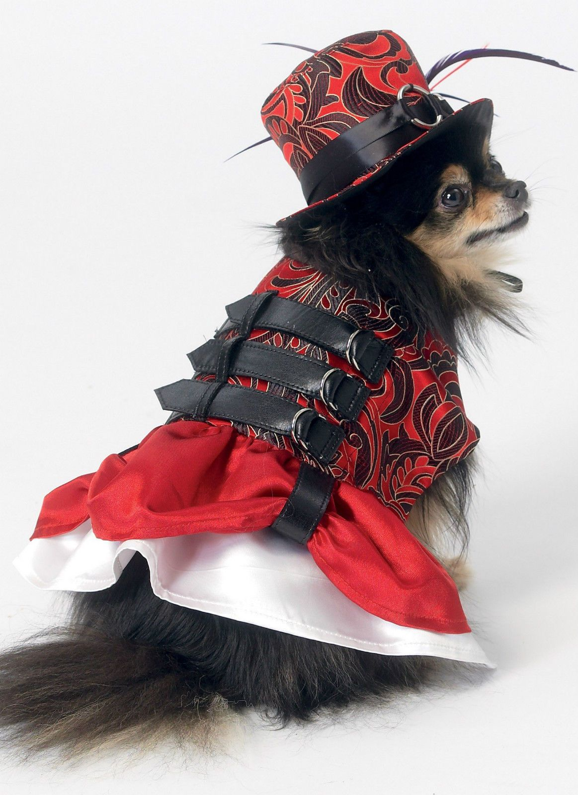 Steampunk Dog Outfits Sewing Pattern Mccall S M7452 Small Xxlarge