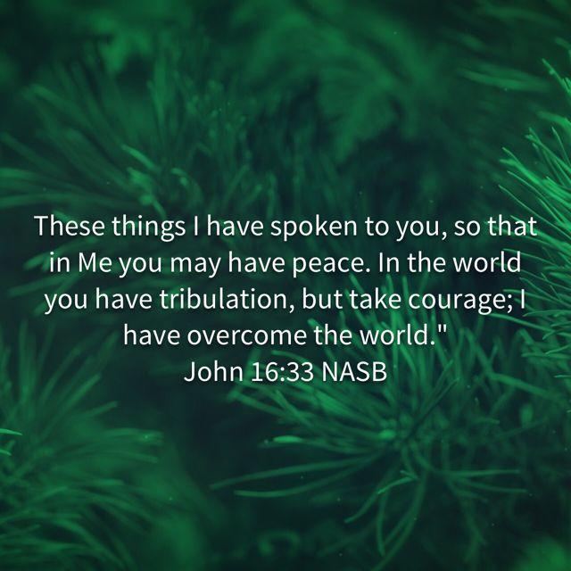 Pin by michelle pratt on God's word the world