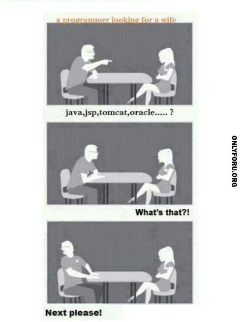 Programmer Looking for Wife - #funny, #lol, #fun, #humor, #comics, #meme, #gag, #lolpics, #Funnypics,