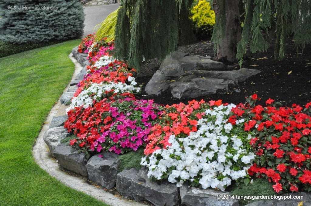 MySecretGarden Charming and Exciting Garden of Rudell and