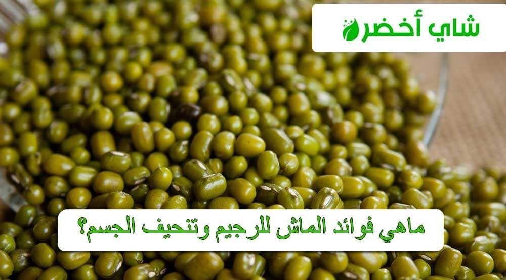 ماهي فوائد الماش للرجيم وتنحيف الجسم Food Beans Vegetables