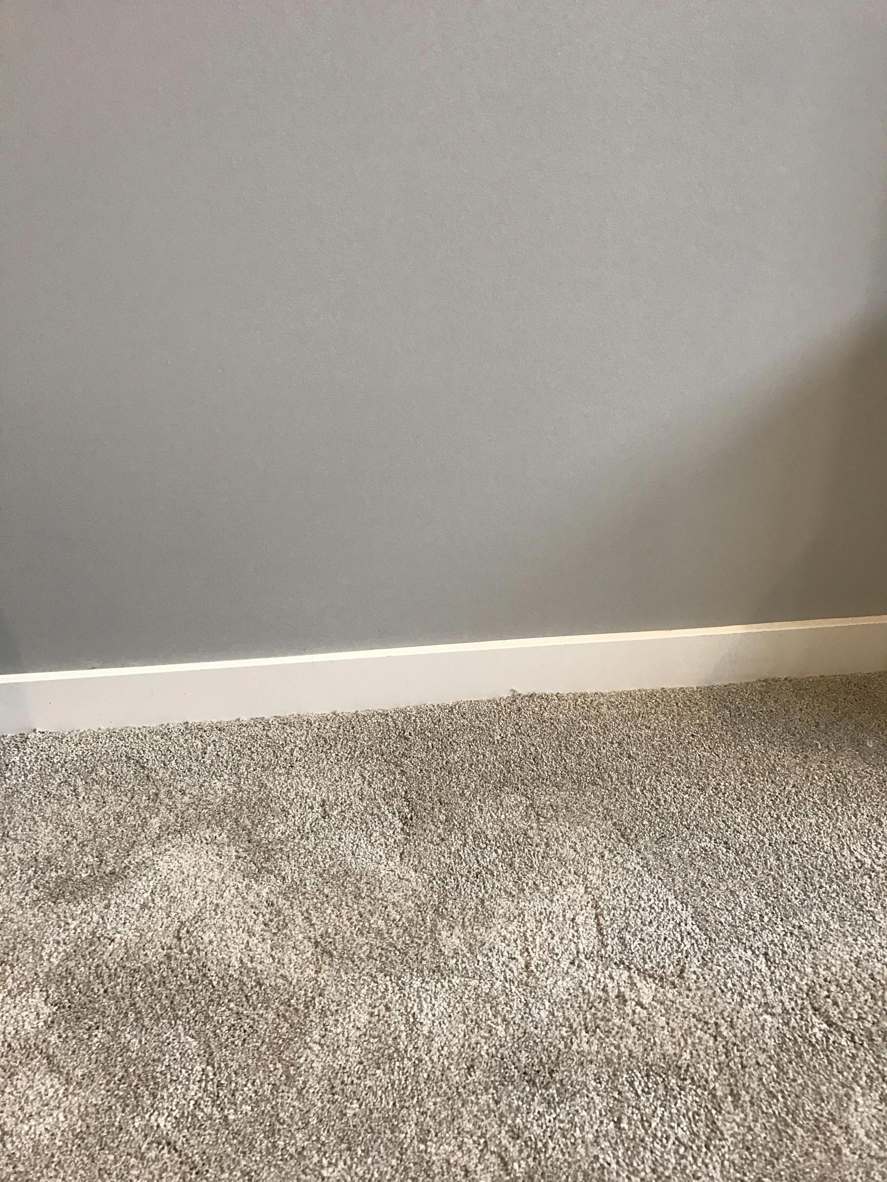 Carpet Runner Installation Guide Pinkcarpetrunnerrental Grey Walls And Carpet Brown Carpet Living Room Light Gray Carpet