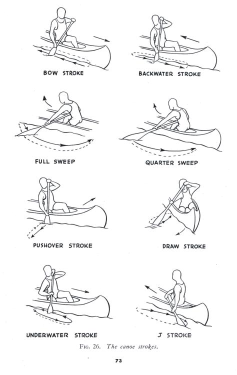 the canoe strokes   u2026