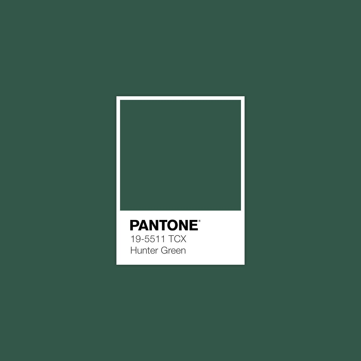 Christmas Green Color.A Christmas Eve Color Of The Day In 2019 Pantone Green