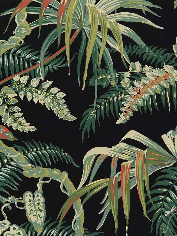 Jungle Print Wallpaper Americanblinds Com Plant