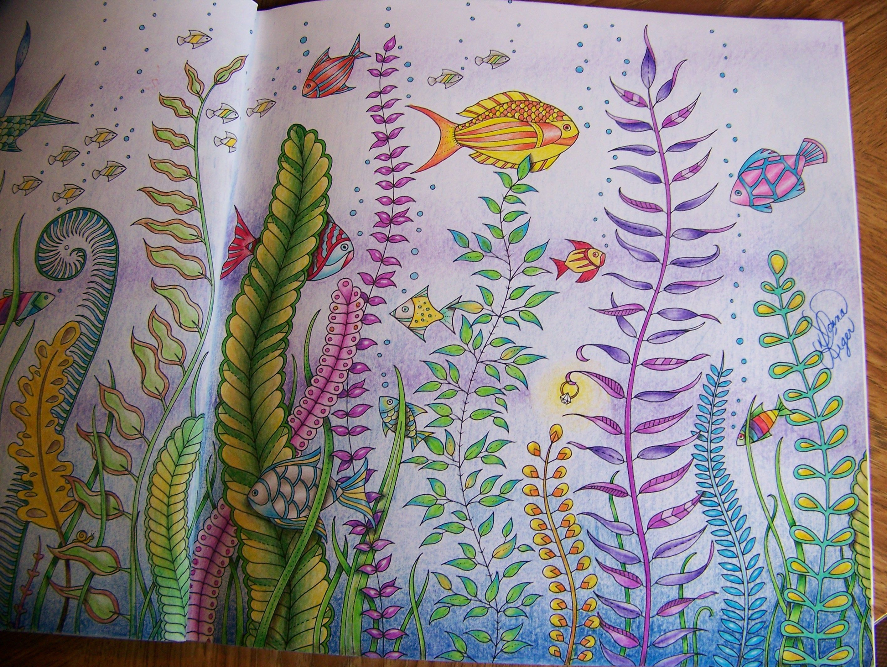 coloring book johanna : Adult Coloring Book Lost Ocean Johanna Basford Underwater Fish Second Page