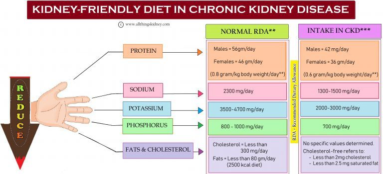 What Entails A Kidney Diet In Chronickidneydisease All Things Kidney Official Medicine Rena Renal Diet Chronic Kidney Disease Kidney Friendly Diet