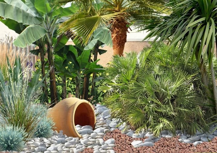 Jardin min ral cr er un jardin de gravier jardins - Creer un jardin mediterraneen ...