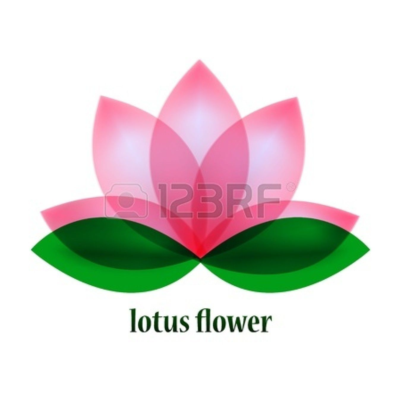 Yoga pattern background seamless pattern with five petals lotus flower - Vector Lotus Flower