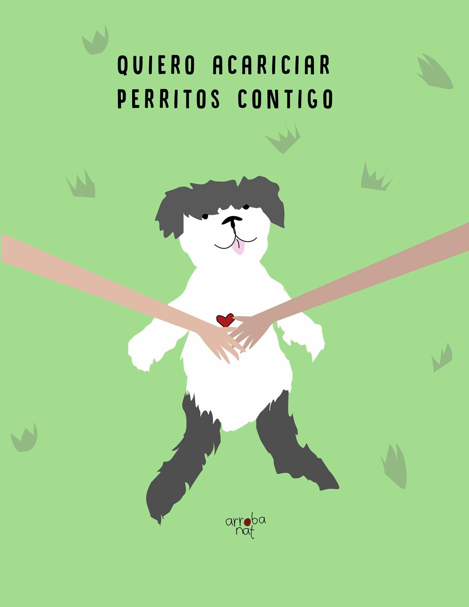 Amores Perros Escenas Hot perro #frases #arrobanat | perros frases, frases sensibles y