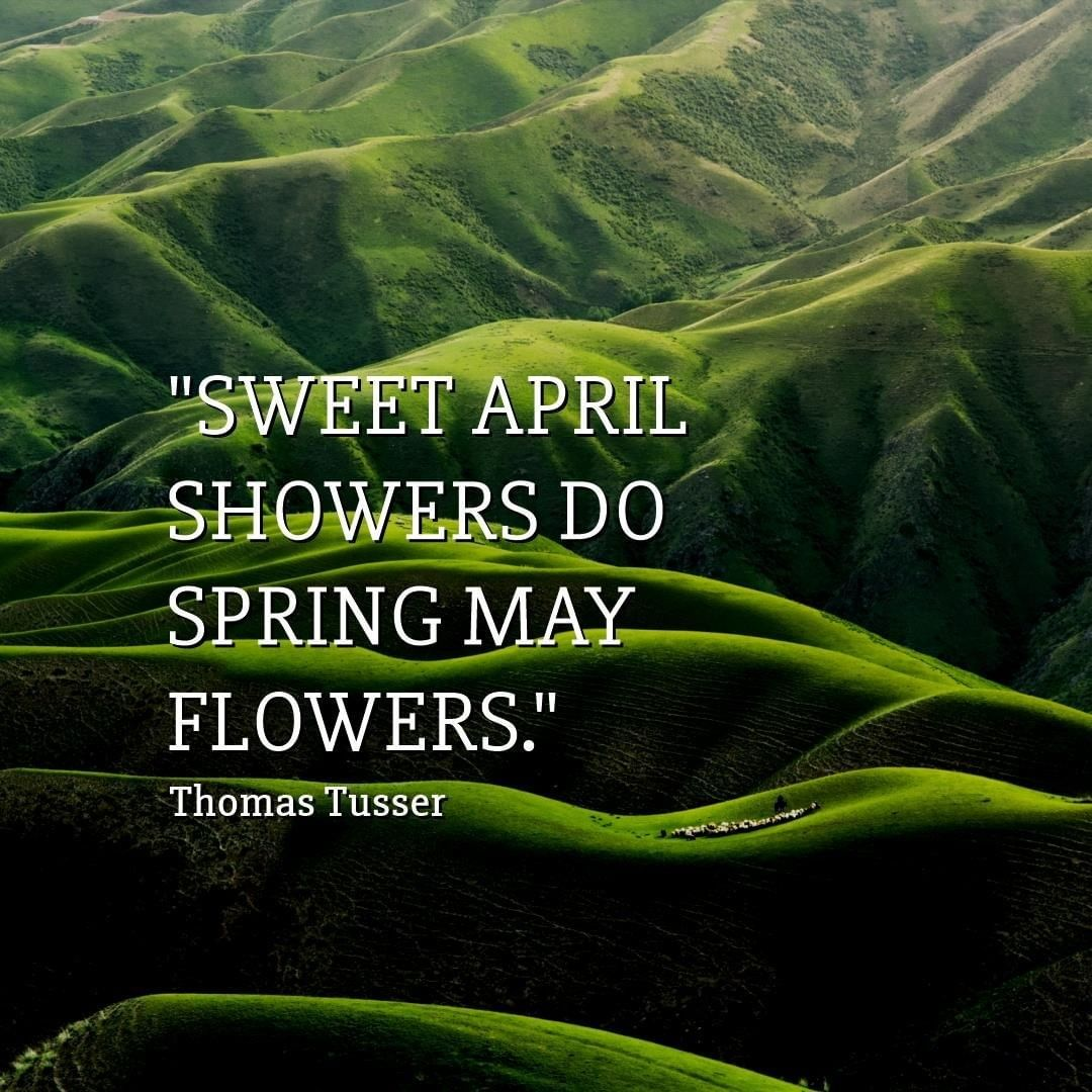 Sweet April Showers Do Spring May Flowers With Images