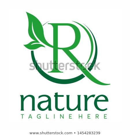 Letter R Logo Concept Nature Green Leaf Symbol Initials R Icon Natural Design Stock Vector Logo Concept Lettering Letter R