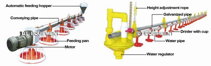 Ground feeding & drinking line,Ground feeding broilers,egg layer