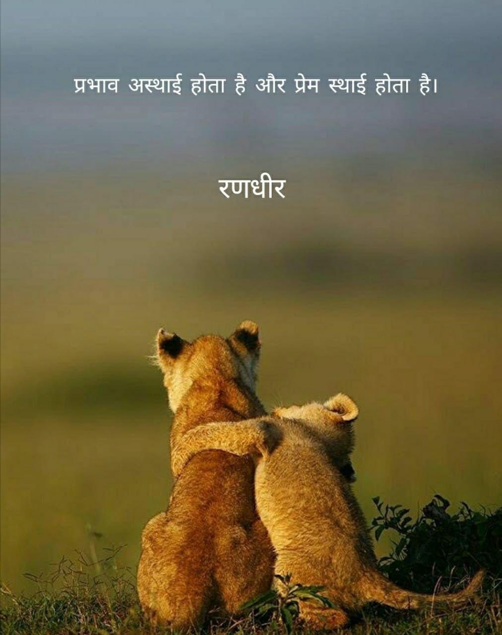 Animal Quotes In Hindi • Opzetzwembadshop nl