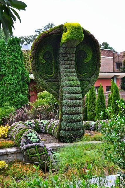 Cobra, Atlanta Botanical Garden Gardens बाग बगीचे