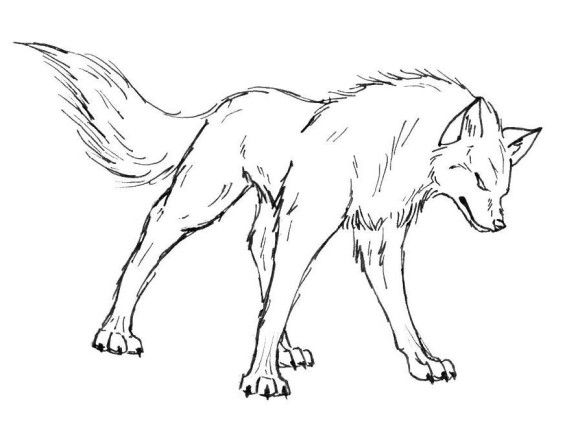 Coloring Pages Anime Wolfs Angry Wolf Drawings Cartoon Wolf
