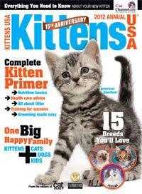 Kittens Usa Magazine Cover Google Search Kittens Cat Kids