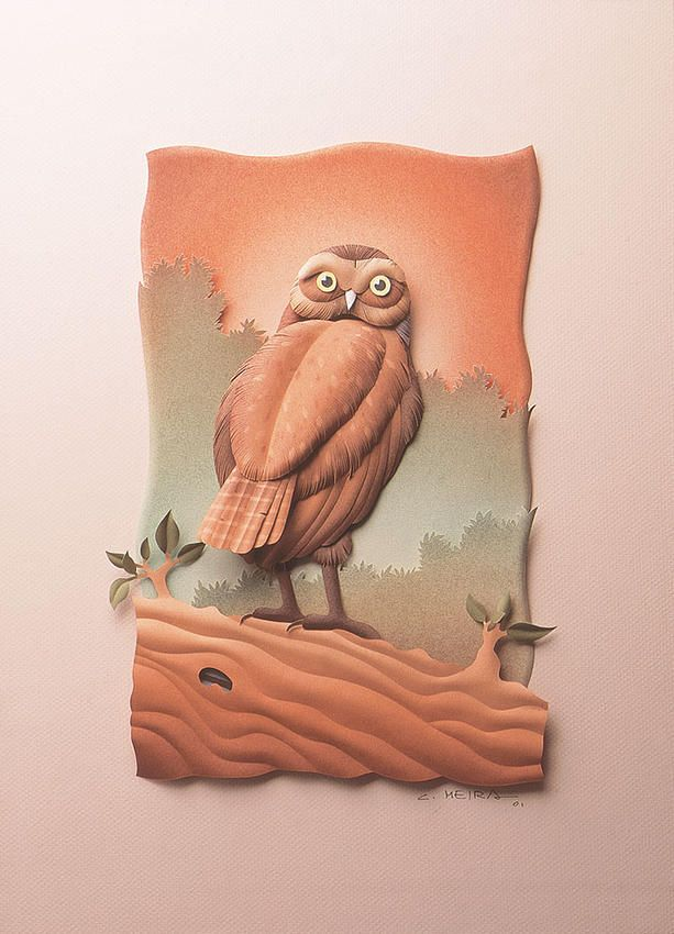 Owl-the-field | BIRDS FROM SANTA CATARINA EXHIBITION | Carlos Meira
