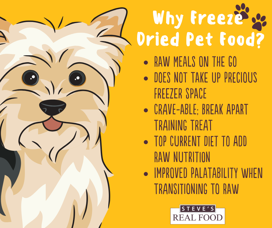 Pin By Healthy Pets Mountain West On Healthy Natural Pet Food Natural Pet Food Pets Raw Food Recipes