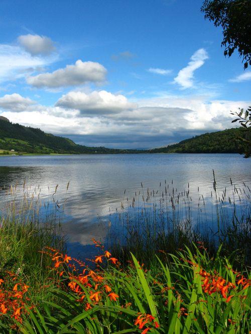 co sligo ireland hinterhoflieblinglandschaftenreisezielereise - Hinterhof Landschaften Bilder