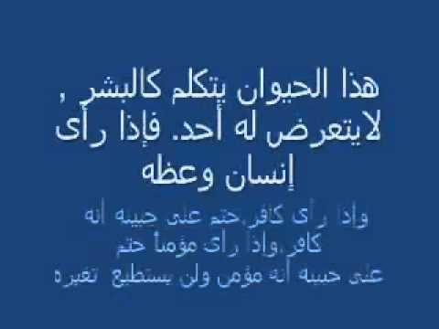 alamat asa3a asoghra wa lkobra par abo nawas mahdi - YouTube