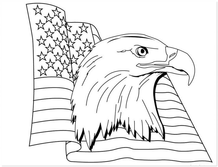 American Eagle Coloring Page 17 Best Images About Coloring Pages