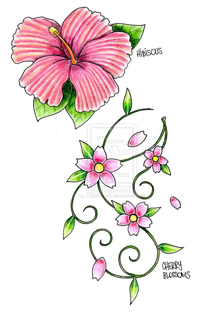 Cherry Blossom Tattoo Drawings  Tattoo Art  Cherry Blossoms By  ~jcbernhard On Deviantart