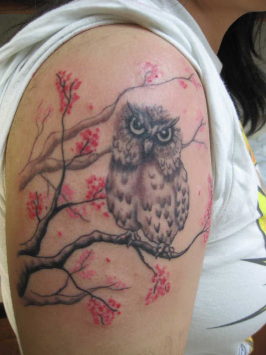 bicep owl tattoo google search chouettes tatouages. Black Bedroom Furniture Sets. Home Design Ideas