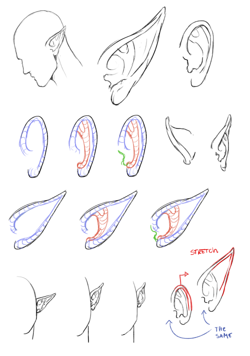 how to draw elf ears rosto pinterest elf ears elves and drawings
