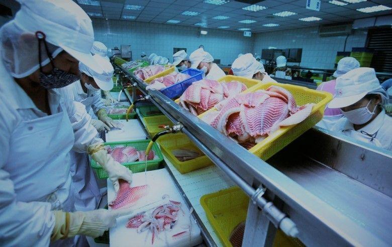 Gulf Seafood LLC has set up a modern seafood processing