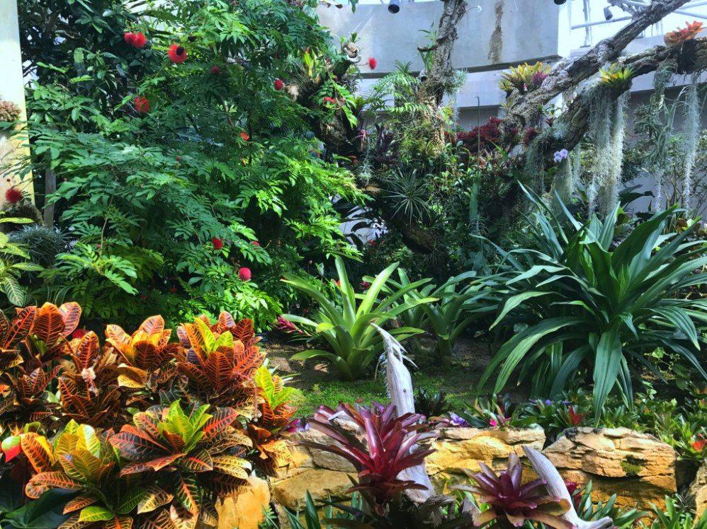 San Antonio Botanical Garden San Antonio To Dos