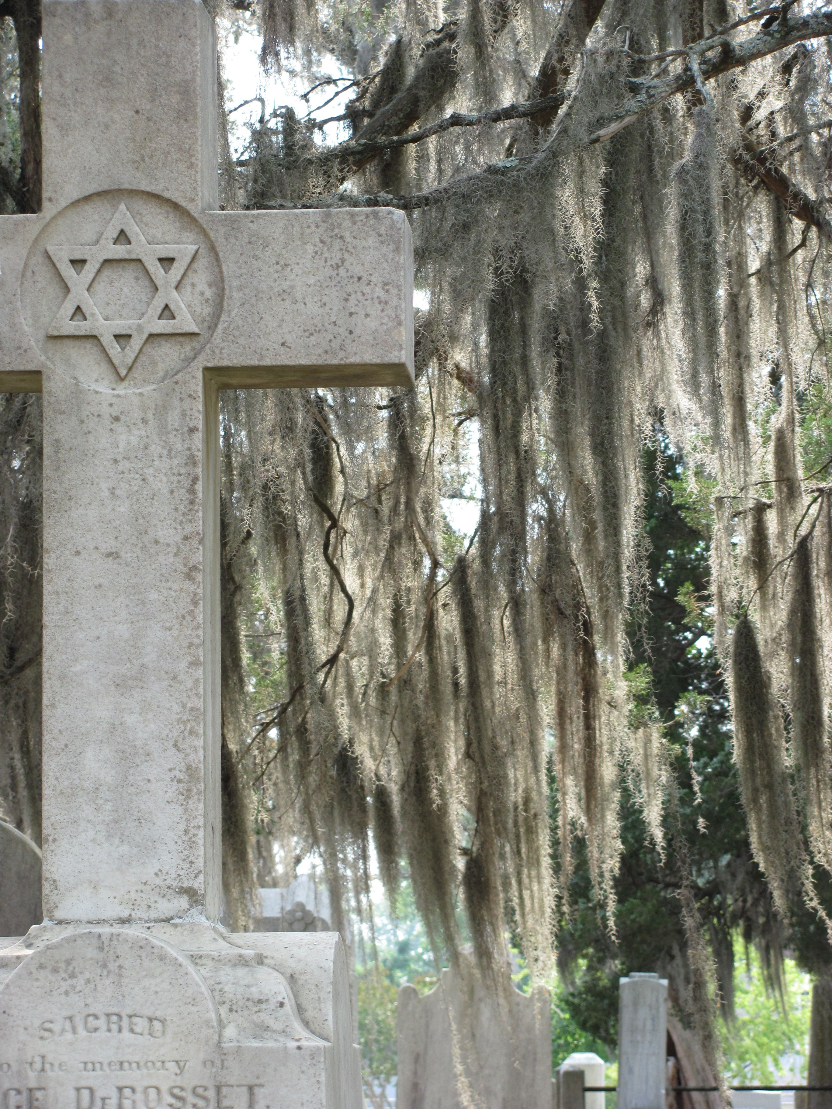 old grave new bern nc summer 2011 there s a story there new bern cemeteries frame my photo pinterest