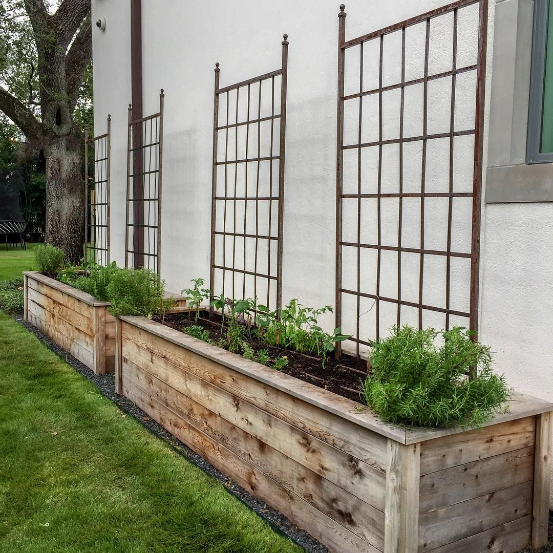 Long Narrow Raised Beds Narrow Garden Garden Beds Raised