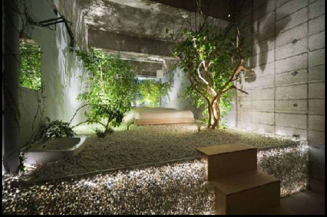 Garden tub decor  Jungle lounge  Viacom AIR LAND SEA SPACE  Pinterest