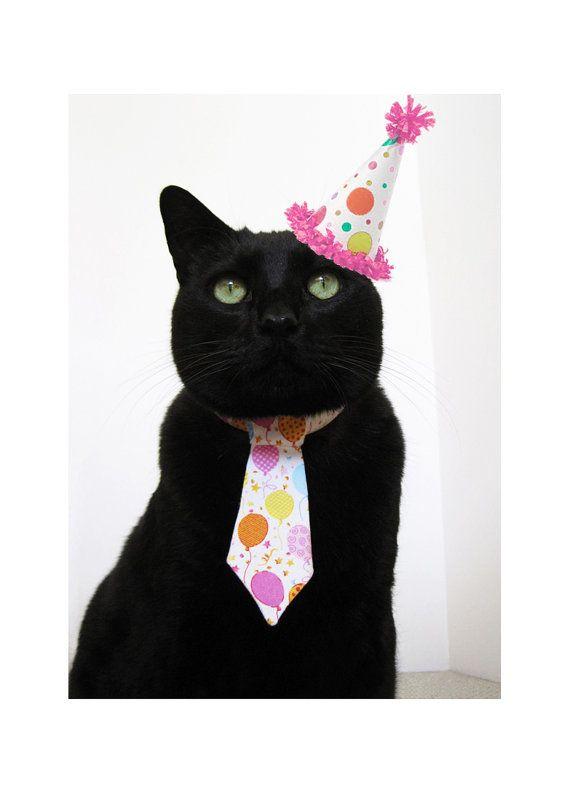 Black Cat Birthday Meme : black, birthday, Birthday, SnoopCattyCatt, Etsy,, .00, Birthday,, Happy, Black