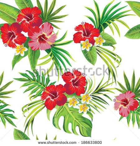 Tropical Hibiscus Leaves And Flowers Clipart Free Clip Art