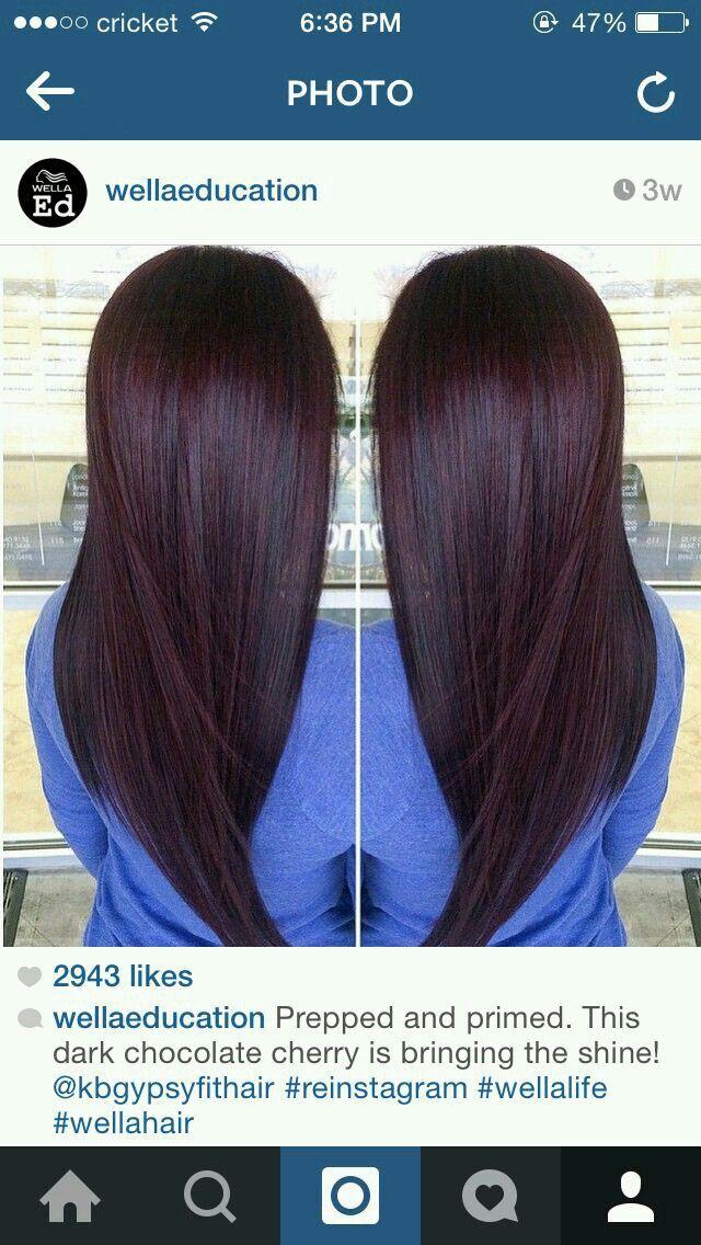 Best Of Darkest Plum Brown Hair Color