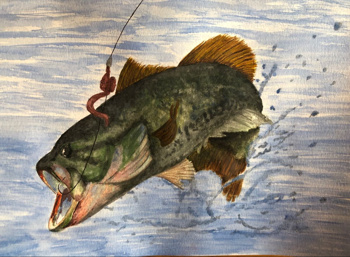 Fish Out Of Water Watercolor Watercolor Paintings Watercolor Painting