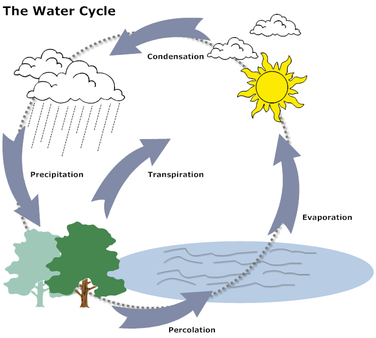 example image: water cycle diagram