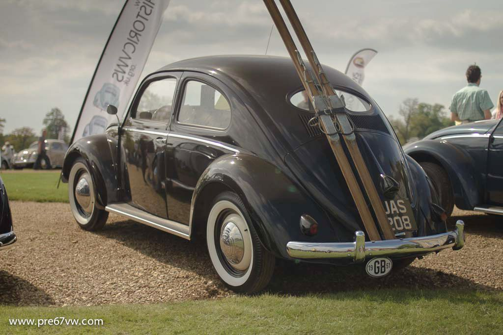 Such a nice Beetle!