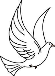 R sultat de recherche d 39 images pour dessin de colombe dessin au crayon dove tattoos bird - Dessin colombe gratuit ...