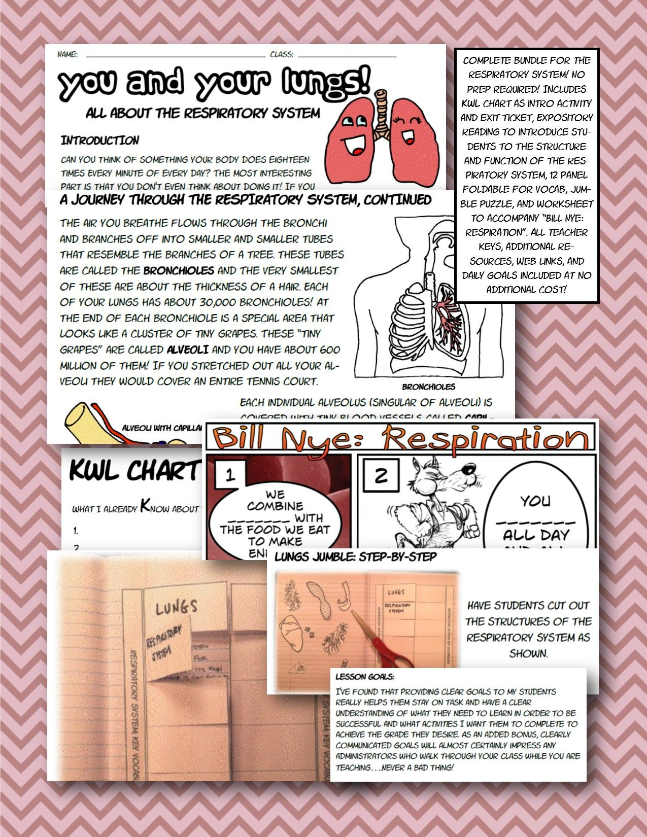 Respiratory Body System Foldable Interactive Ntbk Bill Nye