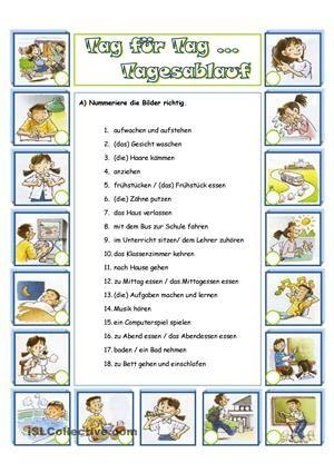 Arbeitsblatt mit 5 Übungen- Zuordnung Wort + Bild- Fragen ...