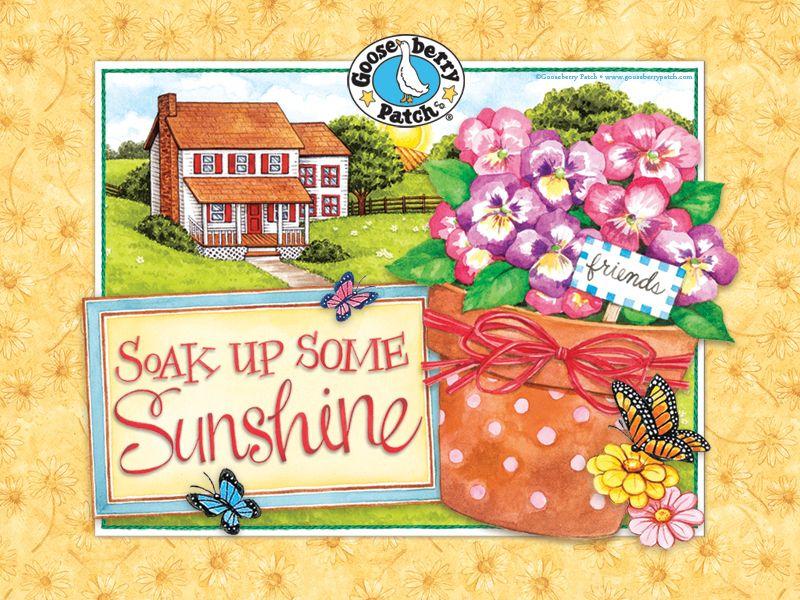Free Download New Spring Wallpaper