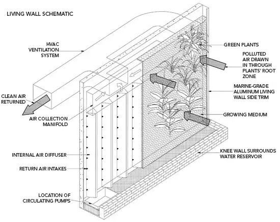 Technology Behind Green Wall Air Filters Green Wall Plant Wall Wall Systems